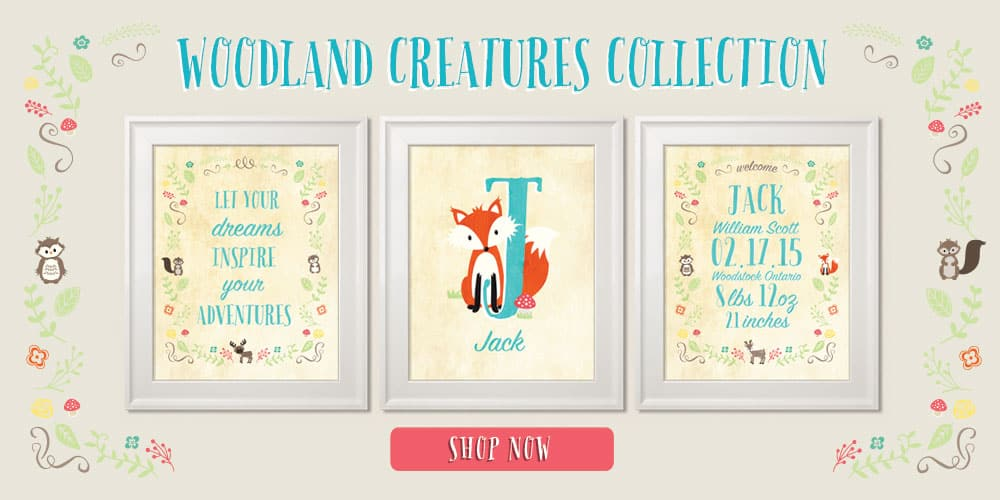 Woodland Creature Collection
