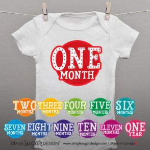 cirque monthly onesie photo stickers