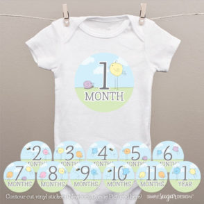 BIrdie-Monthly-Onesie-Stickers